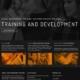 Visual merchandise training, customer service training